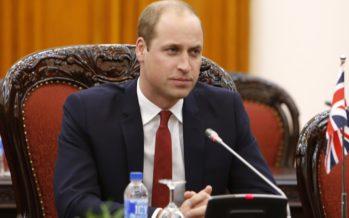 Prinssi William tukee Prinssi Harryn suhdetta