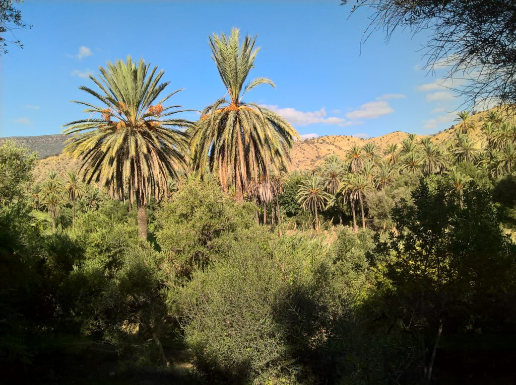 Morocco , Paradise Valley