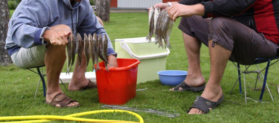 Viron kalataloussektorin yritykset saavat lainaa