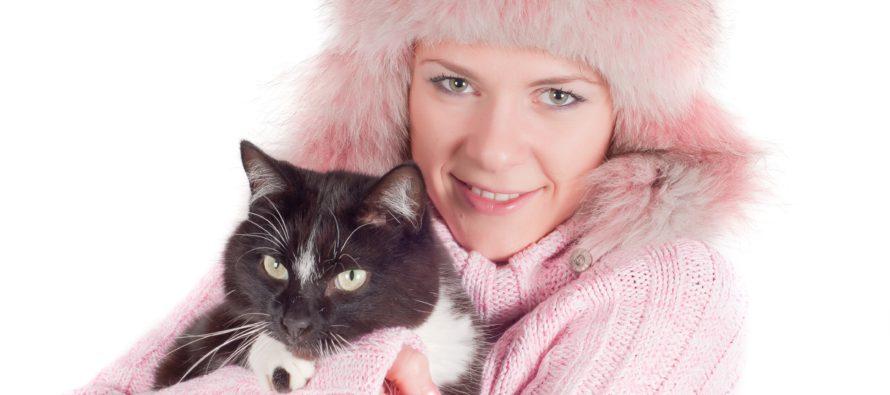 8 sellaista faktaa kissoista, jotka yllättävät jopa kissojen ystäviä