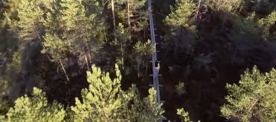Viron tasavalta 100 -juhlakausi alkoi suurella vaelluspäivällä