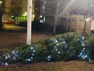 Ozzy Vikman: Kuka tappoi Joulun?
