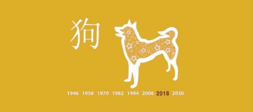 PERUSTEELLINEN kiinalainen horoskooppi vuodelle 2018: Katso, mitä 15. helmikuuta alkava Koiran vuosi tuo sinulle tullessaan