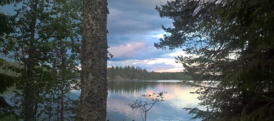 Tuija Järvinen: Luonto antaa minulle voimaa!