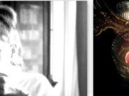Iina Koppinen: Kuvia menneeltä viikolta – sekä outo markkinointikikka, jonka taannoin sain, ja teoksien hinnoittelu